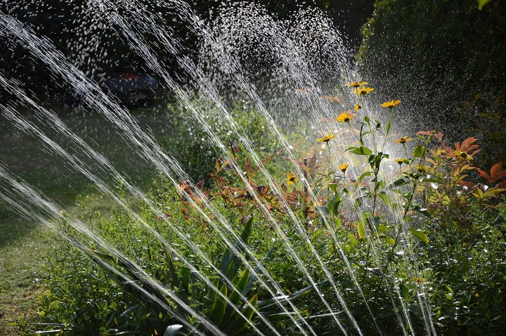 The Importance of Landscaping and Irrigation